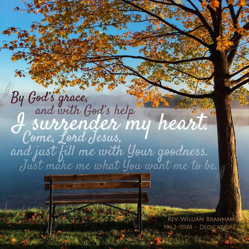 I Surrender My Heart