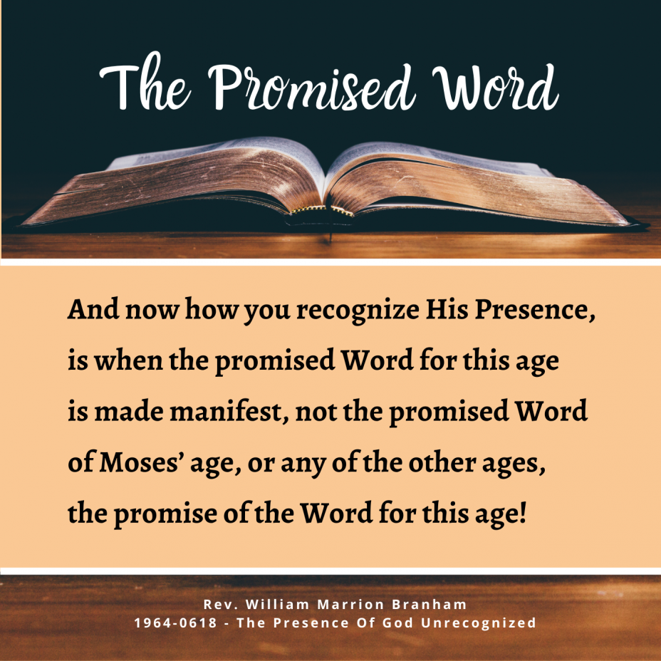 The Promised Word